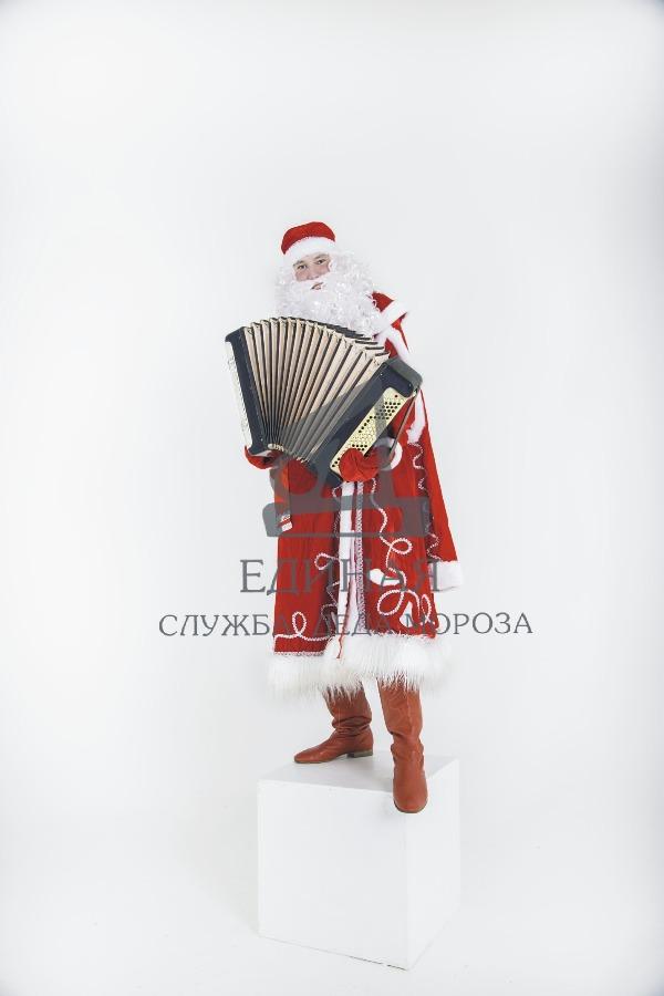 Дед Мороз баянист